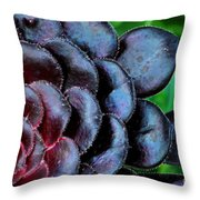 Red Succulents Throw Pillow