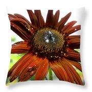 Red Sunflower After The Rain Throw Pillow