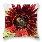 Red Sunflower And Bee Throw Pillow by Kerri Mortenson