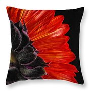 Red Sunflower Vii  Throw Pillow