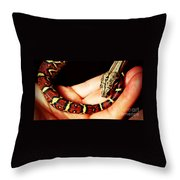 Red Tail Baby Boa - Snake - Pet Throw Pillow