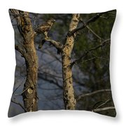 Red-tail Hawk   #0596 Throw Pillow