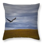 Red Tail Hawk Over The Prairie Throw Pillow