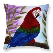Red Tail Macaw Throw Pillow