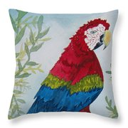 Red Tail Macaw Too Throw Pillow