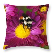 Red-tailed Bumble Bee Throw Pillow