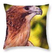 Red Tailed Hawk - 59 Throw Pillow