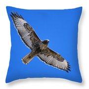 Red-tailed Hawk Arizona Throw Pillow