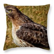 Red Tailed Hawk Close Up Throw Pillow