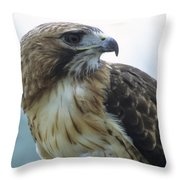 Red-tailed Hawk Profile Throw Pillow