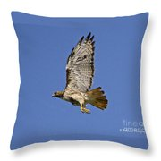 Red-tailed Hawk Takeoff Throw Pillow