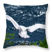 Red Tailed Tropic Bird Throw Pillow