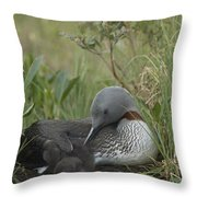 Red-throated Loon With Chick On Nest Throw Pillow