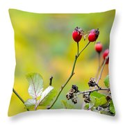 Red Time Throw Pillow