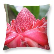Red Torch Ginger Throw Pillow