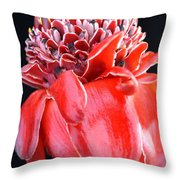 Red Torch Ginger On Black Throw Pillow