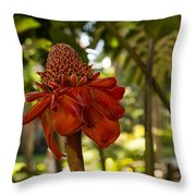 Red Torch Ginger Lily In Hawaii Throw Pillow