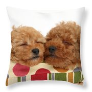 Red Toy Poodle Puppies Throw Pillow