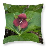 Red Trillium 2 Throw Pillow