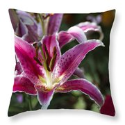 Red Tropical Flowers Throw Pillow