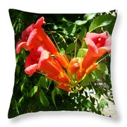 Red Trumpet Throw Pillow