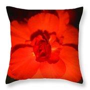 Red Tuberous Begonia Throw Pillow