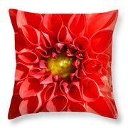 Red Tubular Flower Throw Pillow