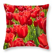 Red Tuilip Bed Throw Pillow