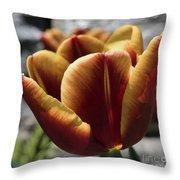 Red Tulip  2116 Throw Pillow