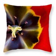 Red Tulip Macro Throw Pillow