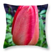 red tulip may  by Leif Sohlman Throw Pillow