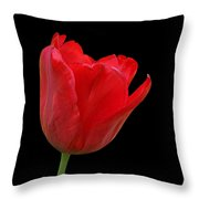 Red Tulip Open Throw Pillow