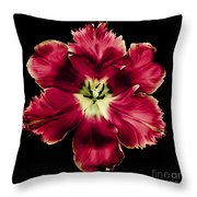 Red Tulip Throw Pillow