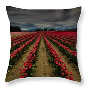 Red Tulip Rows Throw Pillow
