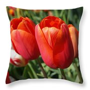 Red Tulips Flowers Pink Orange Tulip Flowers Throw Pillow
