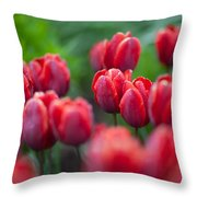 red tulips II Throw Pillow