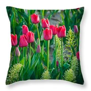 Red Tulips In Skagit Valley Throw Pillow