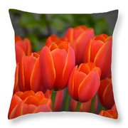 Red Tulips Outlined In Yellow Throw Pillow