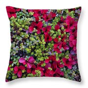 Red Tundra Throw Pillow
