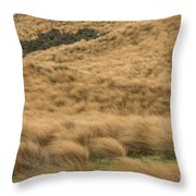 Red Tussock Preserve Throw Pillow