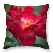 Red Velvet 1a Throw Pillow