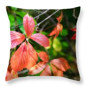 Red Viginia Creeper And Maple Leaves Throw Pillow