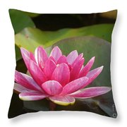 Red Water Lily 4 Throw Pillow