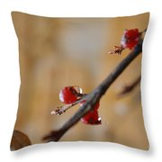 Red Wet And Luscious Throw Pillow