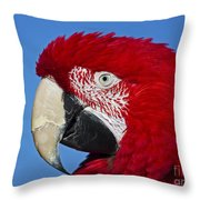 Red White And Blue... Throw Pillow