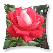 Red-white Rose Throw Pillow