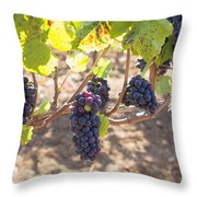 Red Wine Grapes Hanging On Grapevines Throw Pillow