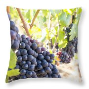 Red Wine Grapes Hanging On Grapevines Vertical Throw Pillow
