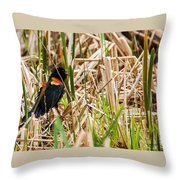 Red-wing Hiding Throw Pillow