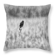 Red-wing Singing In The Marsh Throw Pillow